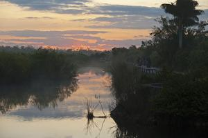 View of swamp habitat at sunrise, with tourists on path, Anhinga Trail, Everglades by David Tipling