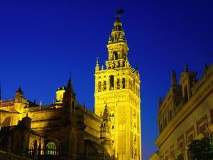 Giralda Illuminated at Night, Seen from Plaza del Triunfo, Sevilla, Andalucia, Spain by David Tomlinson