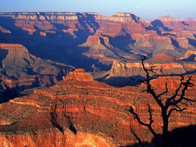 Grand Canyon from South Rim Near Yavapai Point, Grand Canyon National Park, Arizona