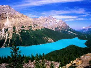 Overhead of Peyto Lake and Mountains, Summer, Banff National Park, Canada by David Tomlinson