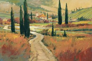 September in Tuscany I by David W. Jackson