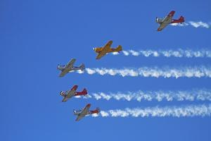 Aerobatic Display by North American Harvards, or T-6 Texans, or SNJ, Airshow by David Wall