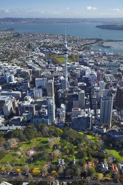 Albert Park, Central Business District, and Sky Tower, Auckland, North Island, New Zealand by David Wall