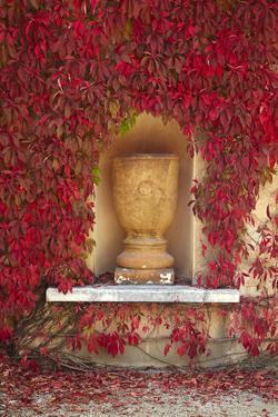 Autumn Color at the Italian Renaissance Garden, Hamilton, Waikato, North Island, New Zealand by David Wall
