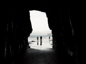 Cathedral Cave, Catlins Coast, South Island, New Zealand by David Wall