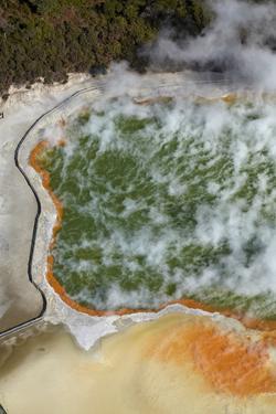 Champagne Pool and Artists Palette, Waiotapu Thermal Reserve, Rotorua, North Island, New Zealand by David Wall