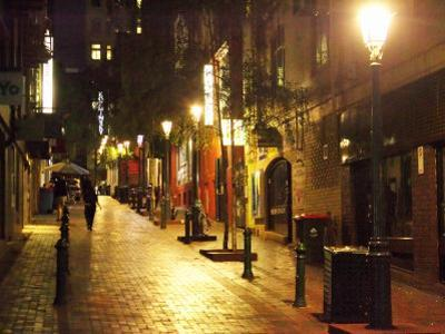 Cobblestone Alleyway, off Collins Street, Melbourne, Victoria, Australia by David Wall