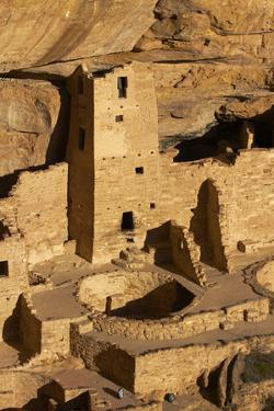 Colorado, Mesa Verde National Park, Cliff Palace, over 700 Years Old by David Wall