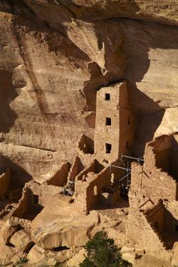 Colorado, Mesa Verde National Park, the Square Tower House Ruins by David Wall