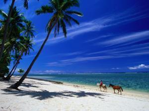 Coral Coast Beach, Fiji by David Wall