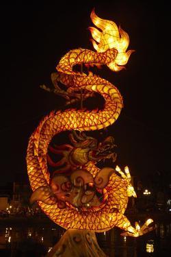 Dragon lantern, Hoi An, Vietnam by David Wall