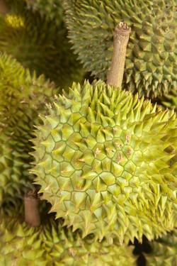 Durians, Can Duoc Market, Long An Province, Mekong Delta, Vietnam by David Wall