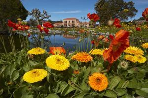 Flowers and Blue Baths, Government Gardens, Rotorua, North Island, New Zealand by David Wall