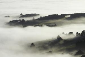 Fog over Otago Harbour and Otago Peninsula, Dunedin, South Island, New Zealand by David Wall