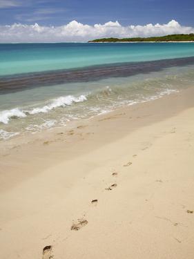 Footprints in Sand on Natadola Beach, Coral Coast, Viti Levu, Fiji, South Pacific by David Wall