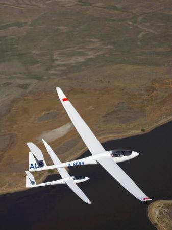 Gliders Racing near Omarama, South Island, New Zealand by David Wall