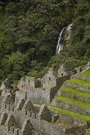 Historic ruins of Inca city at Winay Wayna, on the Inca Trail to Machu Picchu, Peru by David Wall