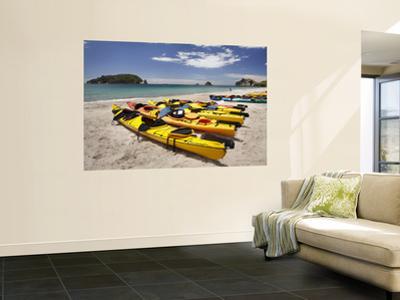 Kayaks on Beach, Hahei, Coromandel Peninsula, North Island, New Zealand by David Wall