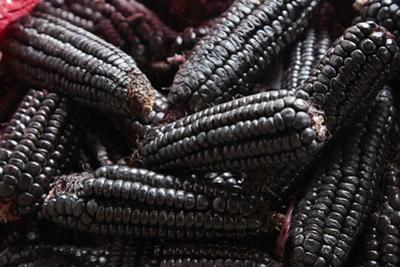 Kulli black Incan corn cobs, San Pedro Market, Cusco, Peru by David Wall