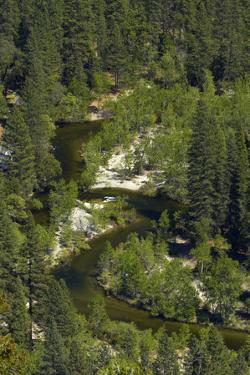 Merced River, Yosemite Valley, Yosemite NP, California by David Wall