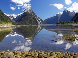 Mitre Peak, Milford Sound, Fjordland National Park, South Island, New Zealand by David Wall