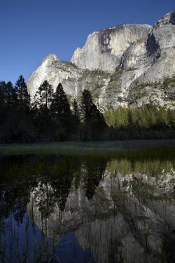 North West Face of Half Dome, Mirror Lake, Yosemite NP, California by David Wall