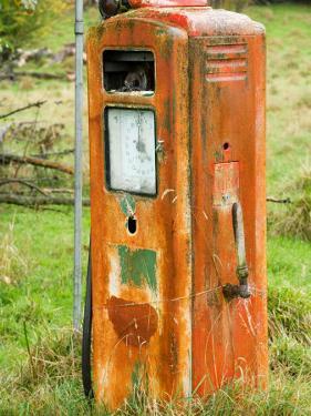 Old Petrol Pump, Taoroa Junction, Rangitikei, North Island, New Zealand by David Wall