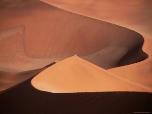 People on Sand Dunes, Sossusvlei, Namibia by David Wall