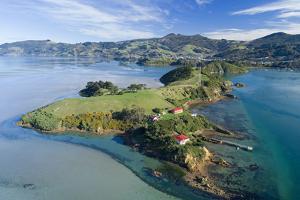 Quarantine Island and Otago Harbour, Dunedin, Otago, South Island, New Zealand by David Wall