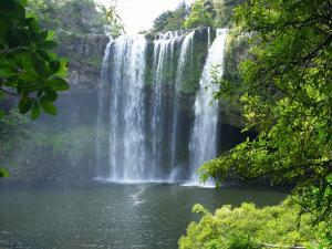 Rainbow Falls, Kerikeri, Northland, New Zealand by David Wall