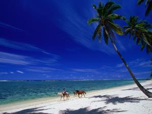 Riding Horses along the Palm Fringed Beach at Tambua Sands Resort, Coral Coast, Viti Levu, Fiji by David Wall