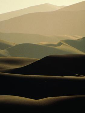 Sand Dunes at Dusk, Sossusvlei, Namibia by David Wall