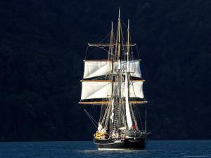 Spirit of New Zealand Tall Ship, Marlborough Sounds, South Island, New Zealand by David Wall