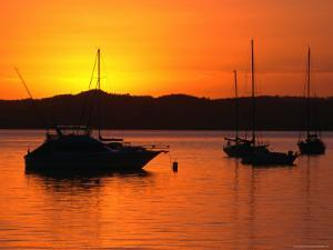 Sunset Over Boats Moored in Russell Harbour, New Zealand by David Wall