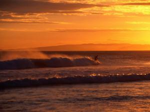 Surfer at St. Kilda Beach, Dunedin, New Zealand by David Wall