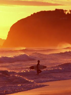 Surfer at Sunset, St Kilda Beach, Dunedin, New Zealand by David Wall
