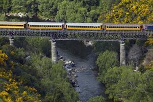 Taieri Gorge Train Crossing Taieri River, South Island, New Zealand by David Wall