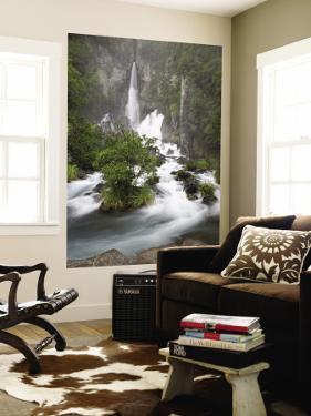 Tarawera Falls, Tarawera River, North Island, New Zealand by David Wall