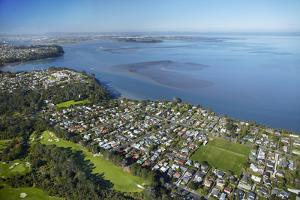 Titirangi Golf Course, Green Bay, and Manukau Harbour, Auckland, North Island, New Zealand by David Wall