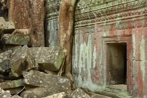 Tree Roots Growing over Ta Prohm Temple Ruins, Angkor World Heritage Site, Siem Reap, Cambodia by David Wall