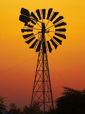 Windmill at Sunset, Fitzroy Crossing, Kimberley Region, Western Australia, Australia by David Wall