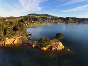 Yellow Point, Broad Bay and Otago Peninsula, Dunedin, South Island, New Zealand by David Wall