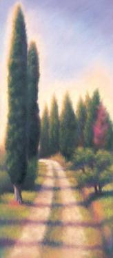 Tuscan Road I by David Wander