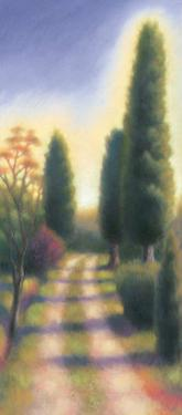 Tuscan Road II by David Wander