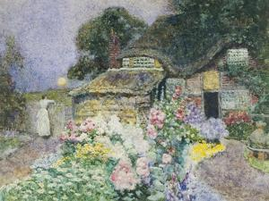 Cottage Garden at Sunset by David Woodlock
