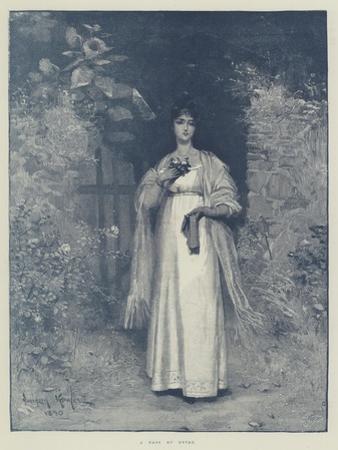 A Rose of Devon