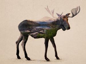The Alaskan Bull Moose by Davies Babies