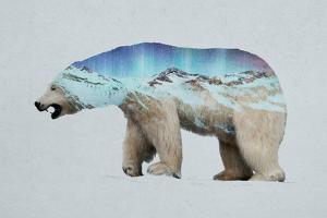 The Arctic Polar Bear by Davies Babies