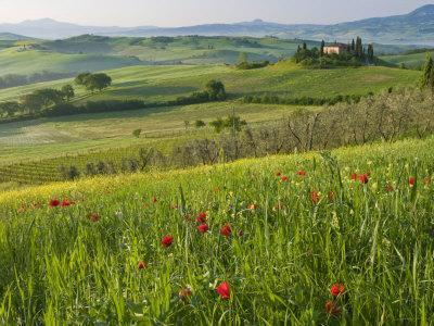 https://imgc.allpostersimages.com/img/posters/dawn-view-of-val-d-orcia-showing-belvedere-and-rolling-tuscan-countryside-san-quirico-d-orcia_u-L-P91SDR0.jpg?p=0