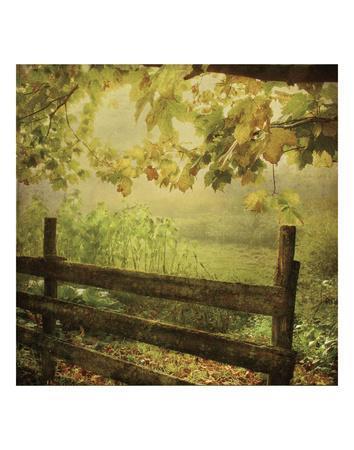 Autumn Overture